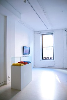 Installation view of exhibition 'Zero Gravity', 532 Gallery Thomas Jaeckel, New York, 2013