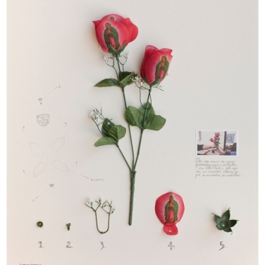 Alberto Baraya Expedition california, 2012, found objects, photography and drawing on paper, 100x81 cm