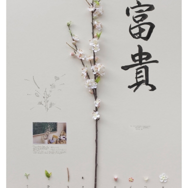 Alberto Baraya Expedition Shanghai, 2012, silk, plastic, photography and drawing on paper, 100x81 cm